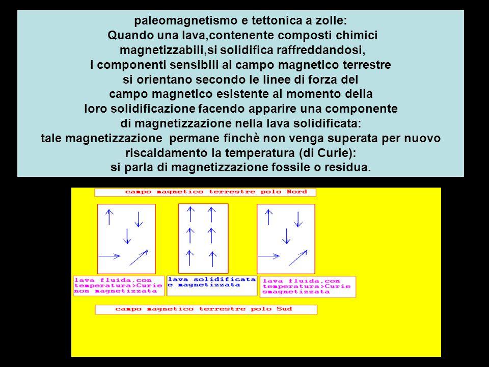 paleomagnetismo e tettonica a zolle: