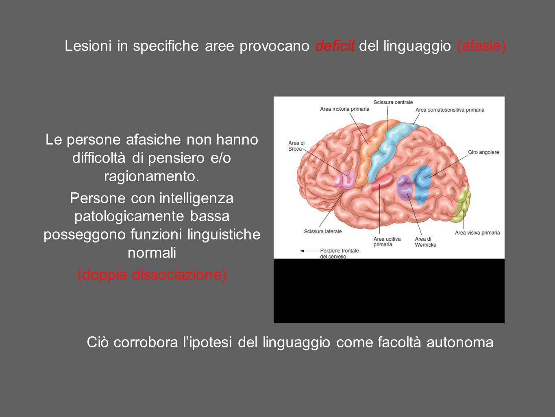 Lesioni in specifiche aree provocano deficit del linguaggio (afasie)