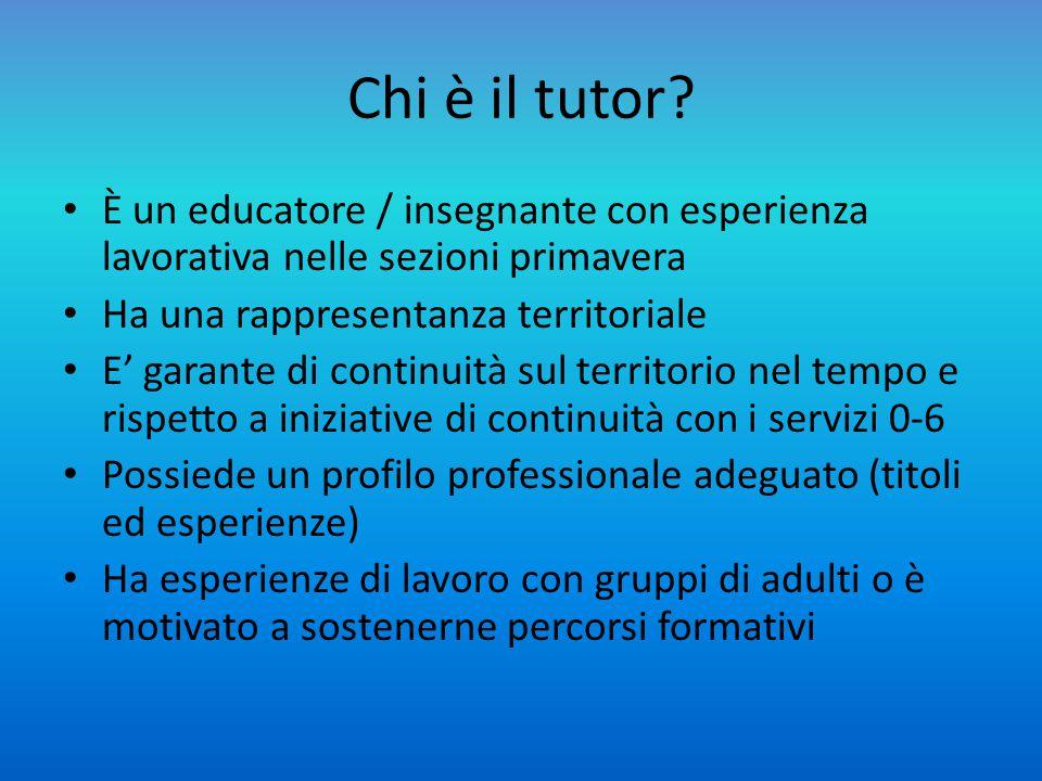 Chi è il tutor È un educatore / insegnante con esperienza lavorativa nelle sezioni primavera. Ha una rappresentanza territoriale.