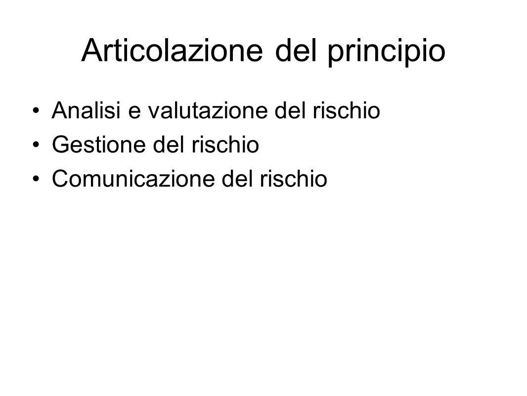 Articolazione del principio