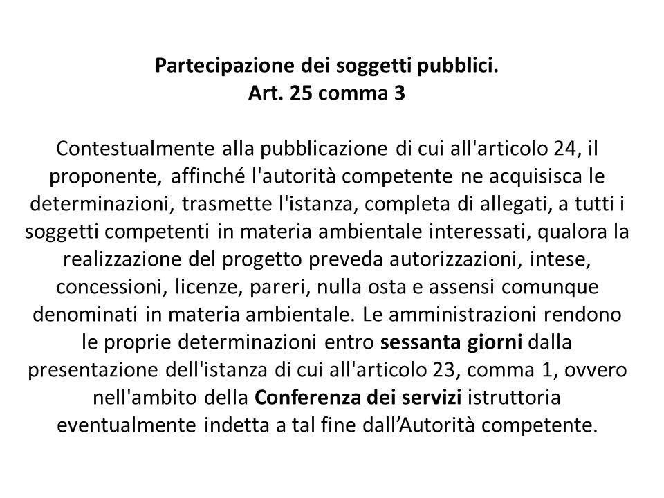 Partecipazione dei soggetti pubblici. Art