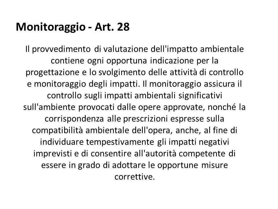 Monitoraggio - Art. 28
