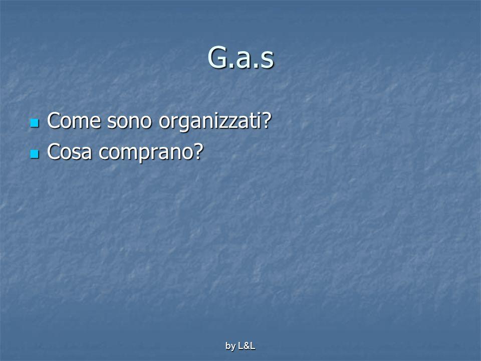 G.a.s Come sono organizzati Cosa comprano by L&L