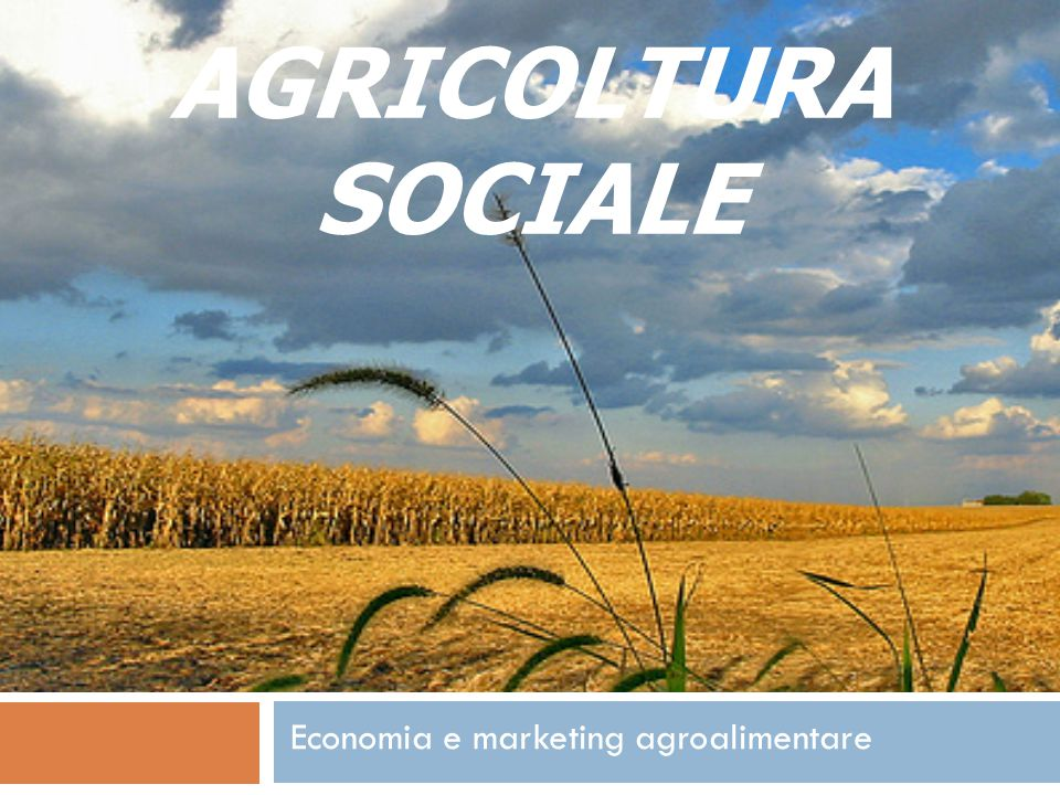 Economia e marketing agroalimentare
