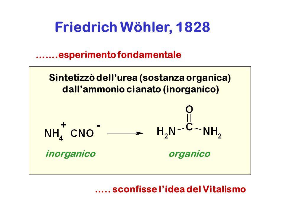 Friedrich Wöhler, 1828 …….esperimento fondamentale