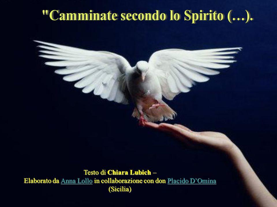Camminate secondo lo Spirito (…).