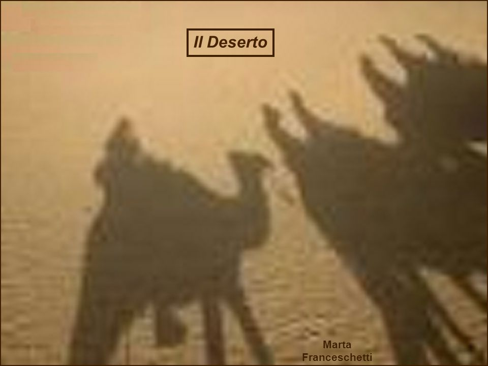 Il Deserto Marta Franceschetti