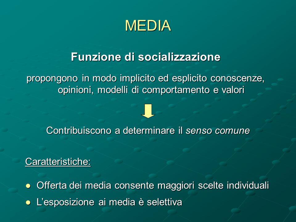 Funzione di socializzazione