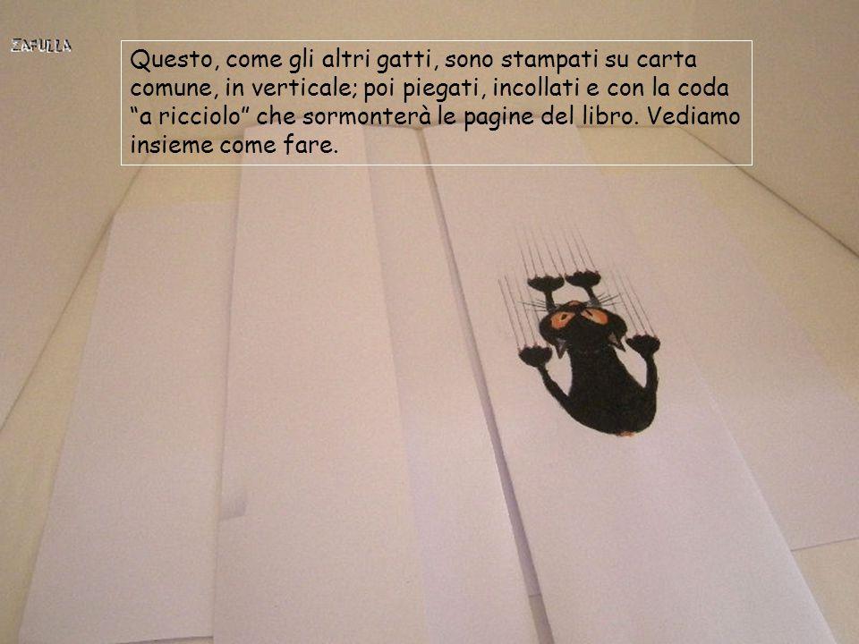 Questo, come gli altri gatti, sono stampati su carta comune, in verticale; poi piegati, incollati e con la coda a ricciolo che sormonterà le pagine del libro.
