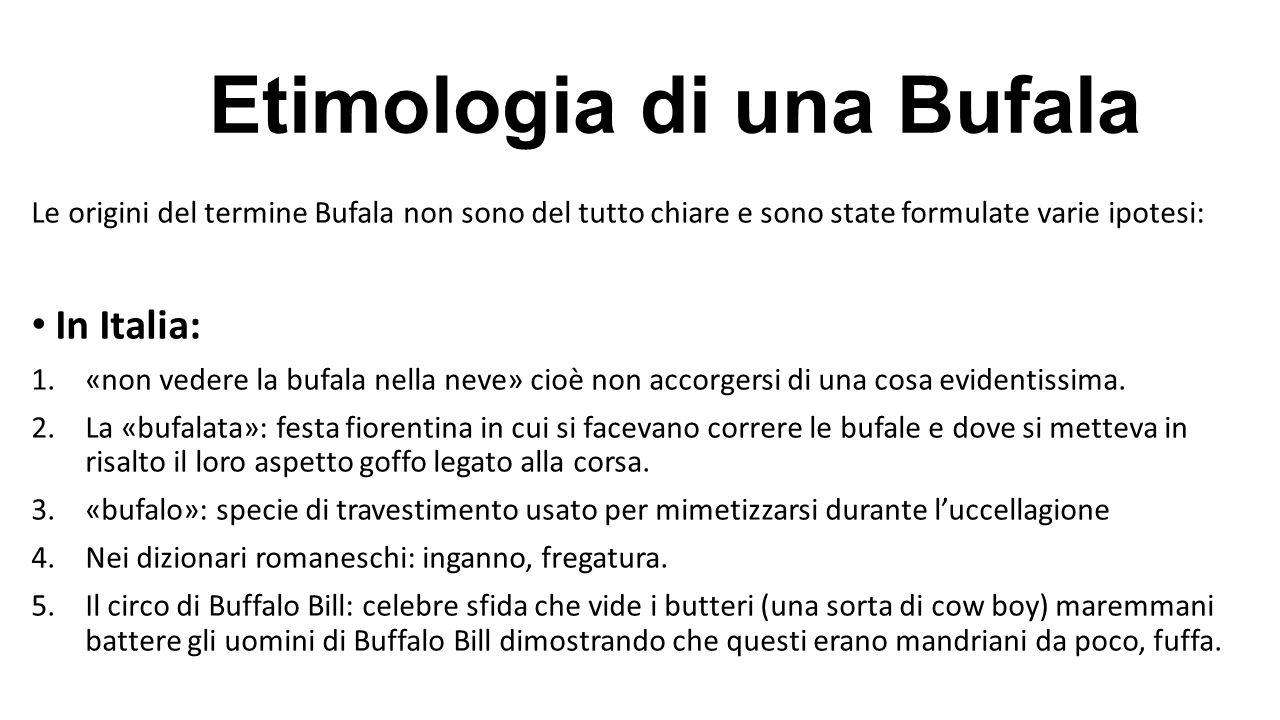 Etimologia di una Bufala