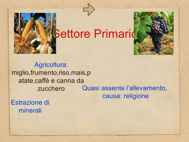 Settore Primario Agricoltura: miglio,frumento,riso,mais,patate,caffè e canna da zucchero. Quasi assente l'allevamento,