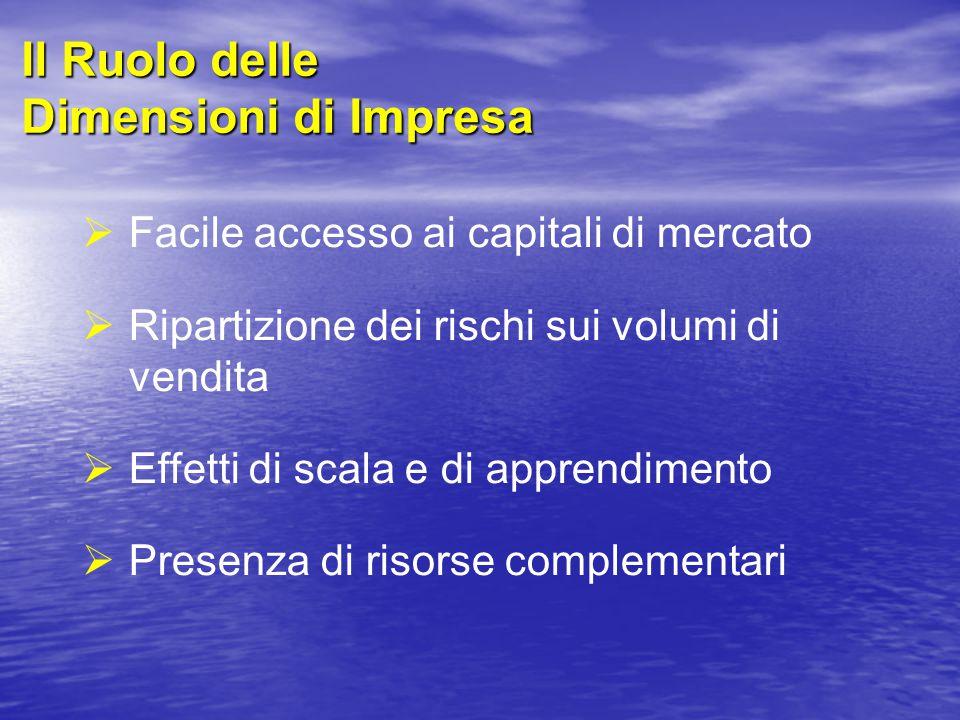 Il Ruolo delle Dimensioni di Impresa