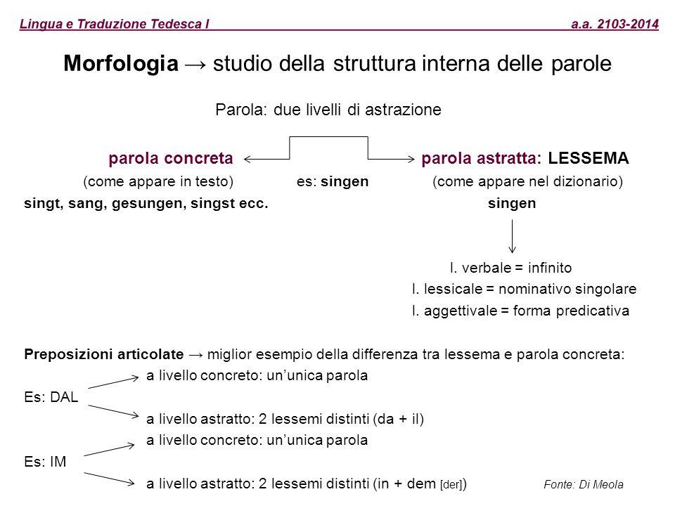 Morfologia → studio della struttura interna delle parole