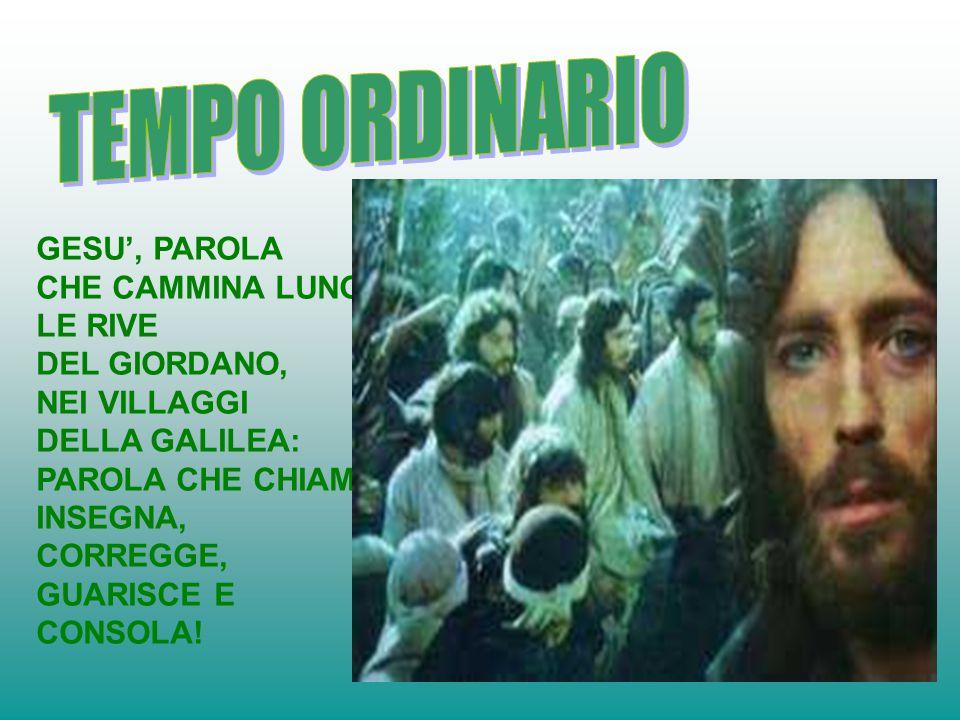 TEMPO ORDINARIO GESU', PAROLA CHE CAMMINA LUNGO LE RIVE DEL GIORDANO,
