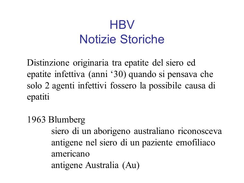 HBV Notizie Storiche Distinzione originaria tra epatite del siero ed