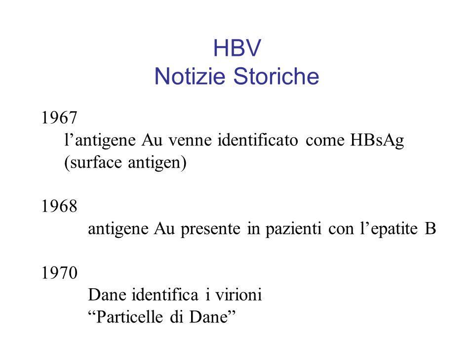 HBV Notizie Storiche 1967 l'antigene Au venne identificato come HBsAg