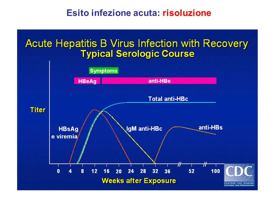 Esito infezione acuta: risoluzione