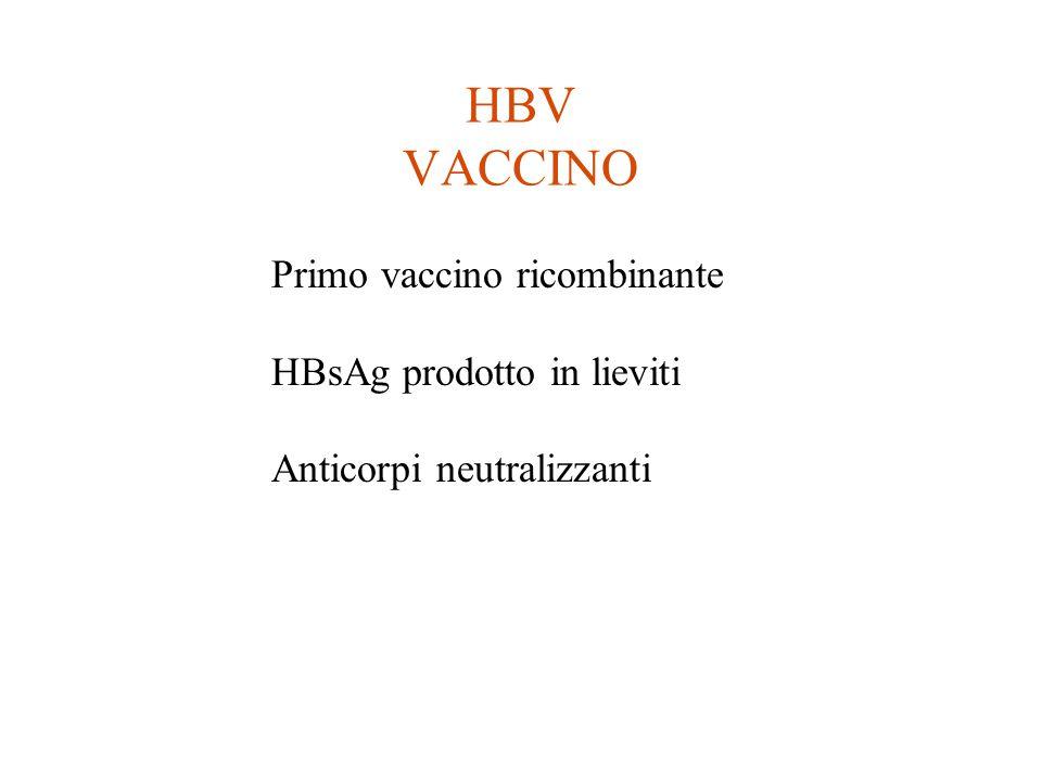 HBV VACCINO Primo vaccino ricombinante HBsAg prodotto in lieviti