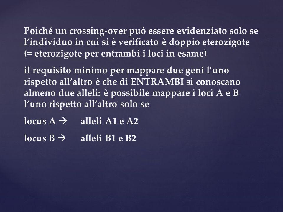Poiché un crossing-over può essere evidenziato solo se l'individuo in cui si è verificato è doppio eterozigote (= eterozigote per entrambi i loci in esame)