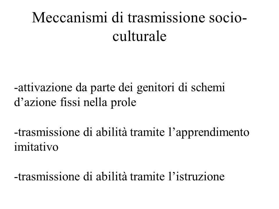 Meccanismi di trasmissione socio-culturale