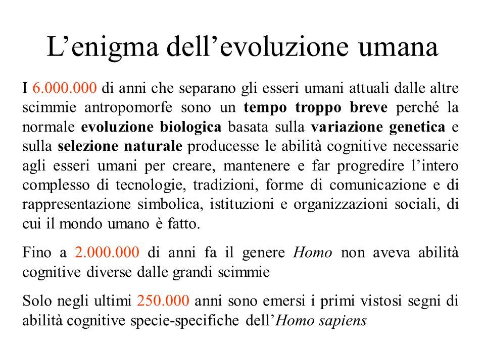 L'enigma dell'evoluzione umana