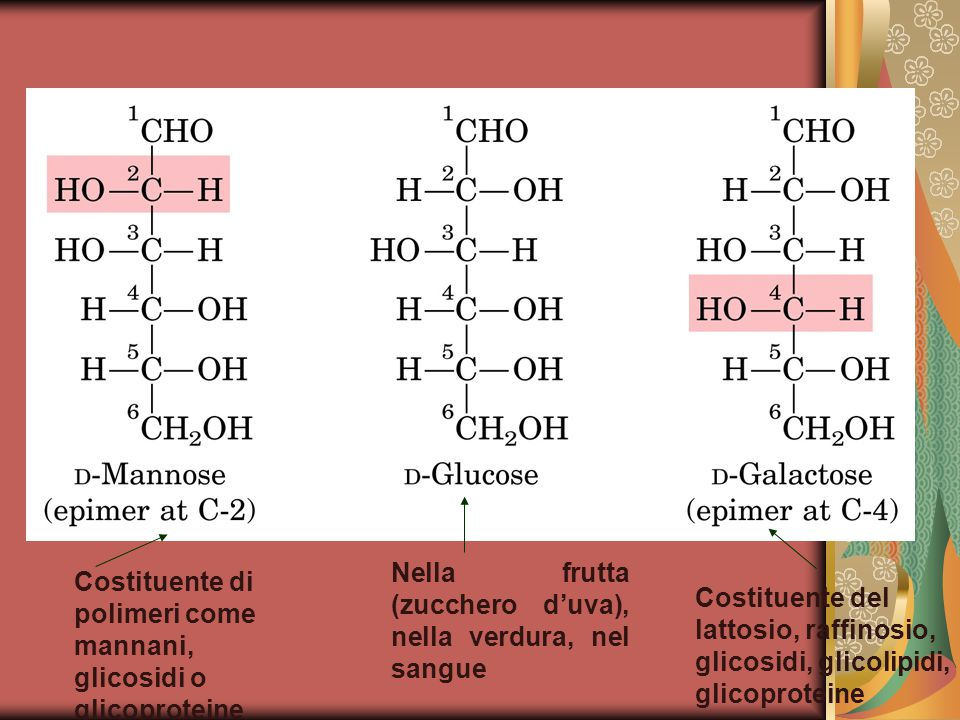 Nella frutta (zucchero d'uva), nella verdura, nel sangue