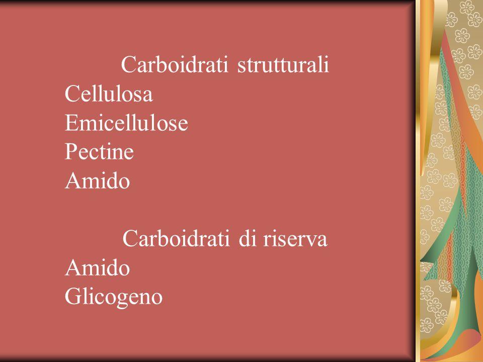 Carboidrati strutturali Cellulosa Emicellulose Pectine Amido