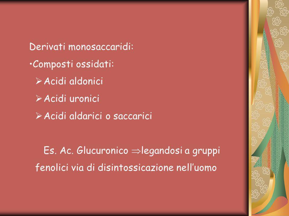 Derivati monosaccaridi: