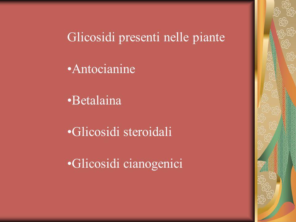 Glicosidi presenti nelle piante