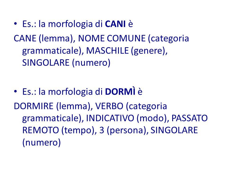 Es.: la morfologia di CANI è