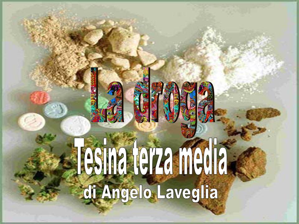 La droga Tesina terza media di Angelo Laveglia