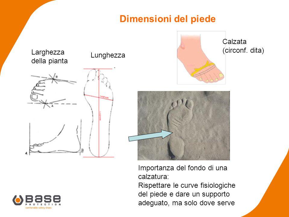 Dimensioni del piede Calzata Larghezza della pianta (circonf. dita)
