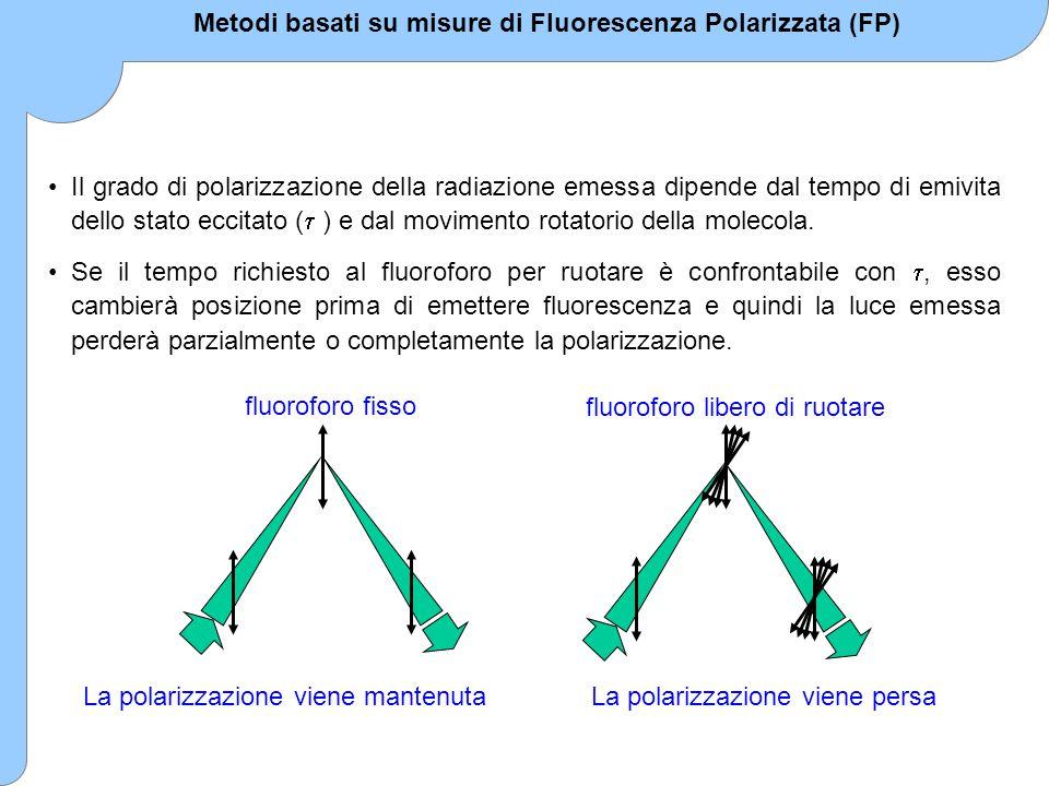 Metodi basati su misure di Fluorescenza Polarizzata (FP)