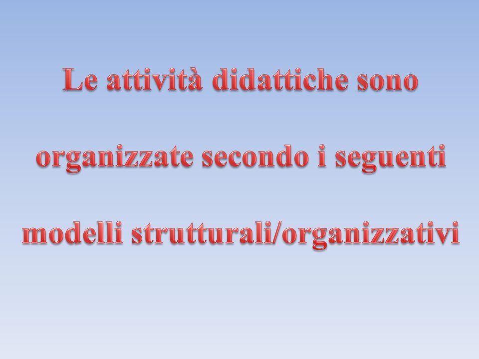 Le attività didattiche sono organizzate secondo i seguenti