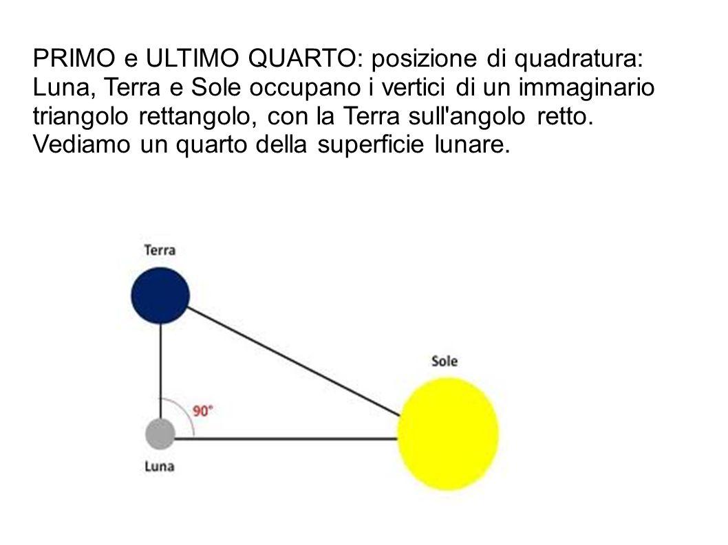 PRIMO e ULTIMO QUARTO: posizione di quadratura: Luna, Terra e Sole occupano i vertici di un immaginario triangolo rettangolo, con la Terra sull angolo retto.