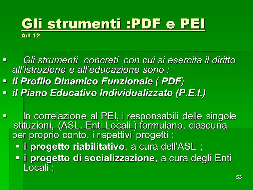 Gli strumenti :PDF e PEI Art 12