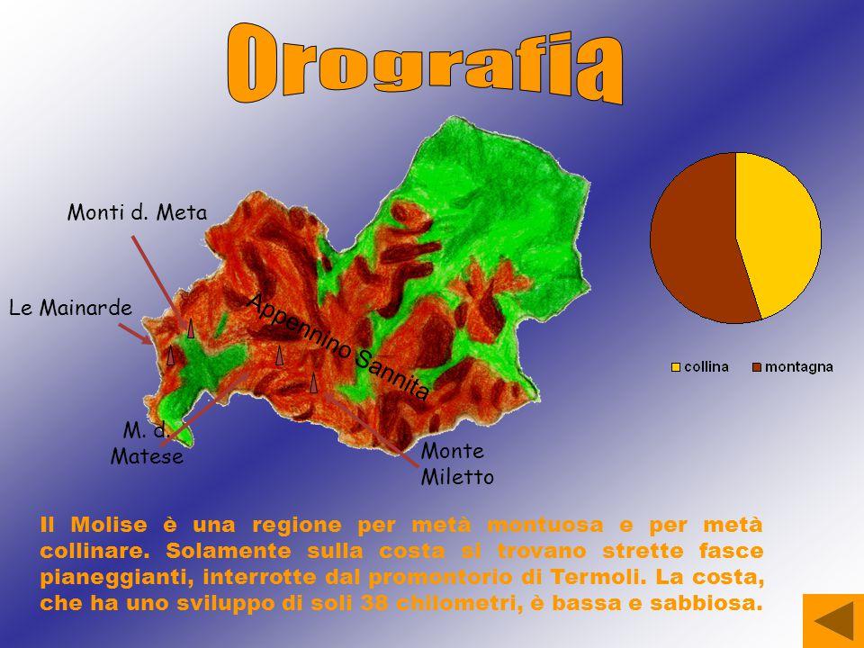 Orografia Appennino Sannita Monti d. Meta Le Mainarde M. d. Matese