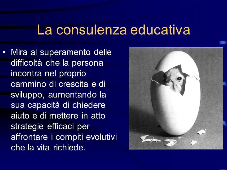 La consulenza educativa