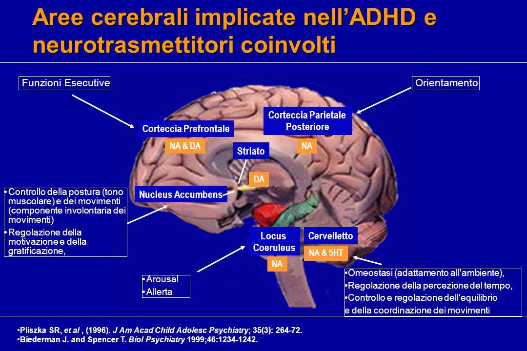 Aree cerebrali implicate nell'ADHD e neurotrasmettitori coinvolti