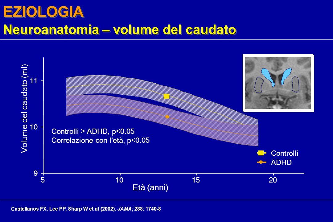 EZIOLOGIA Neuroanatomia – volume del caudato