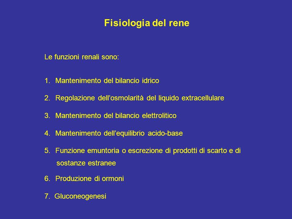 Fisiologia del rene Le funzioni renali sono:
