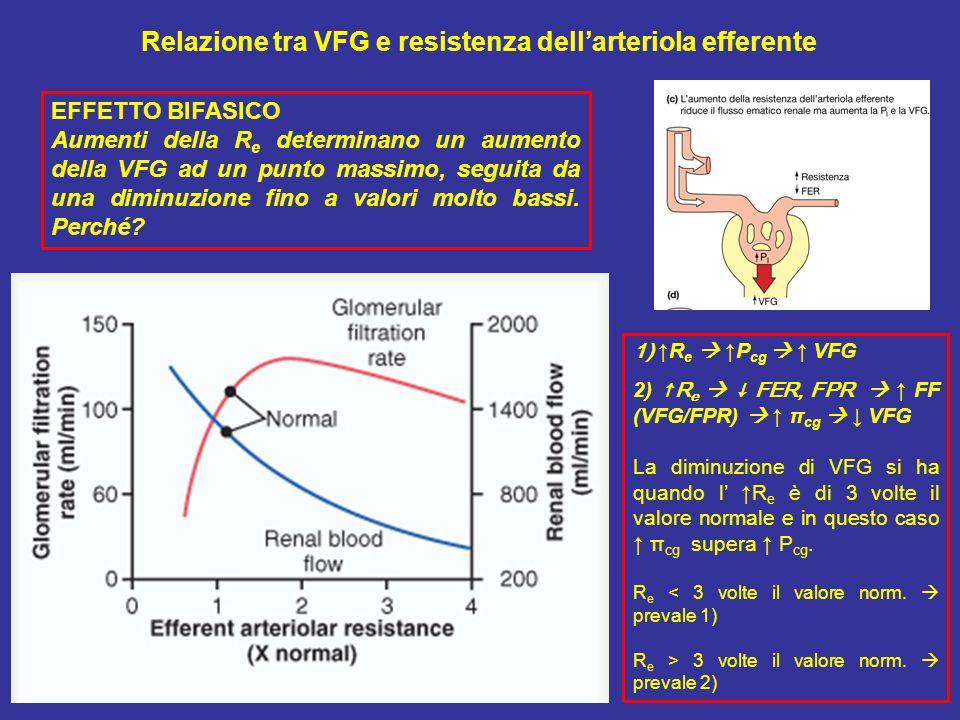 Relazione tra VFG e resistenza dell'arteriola efferente