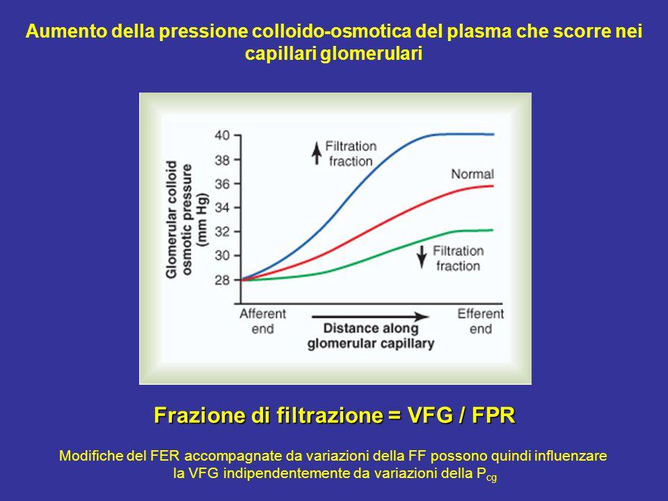 Frazione di filtrazione = VFG / FPR