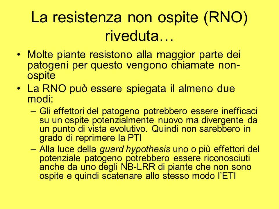 La resistenza non ospite (RNO) riveduta…