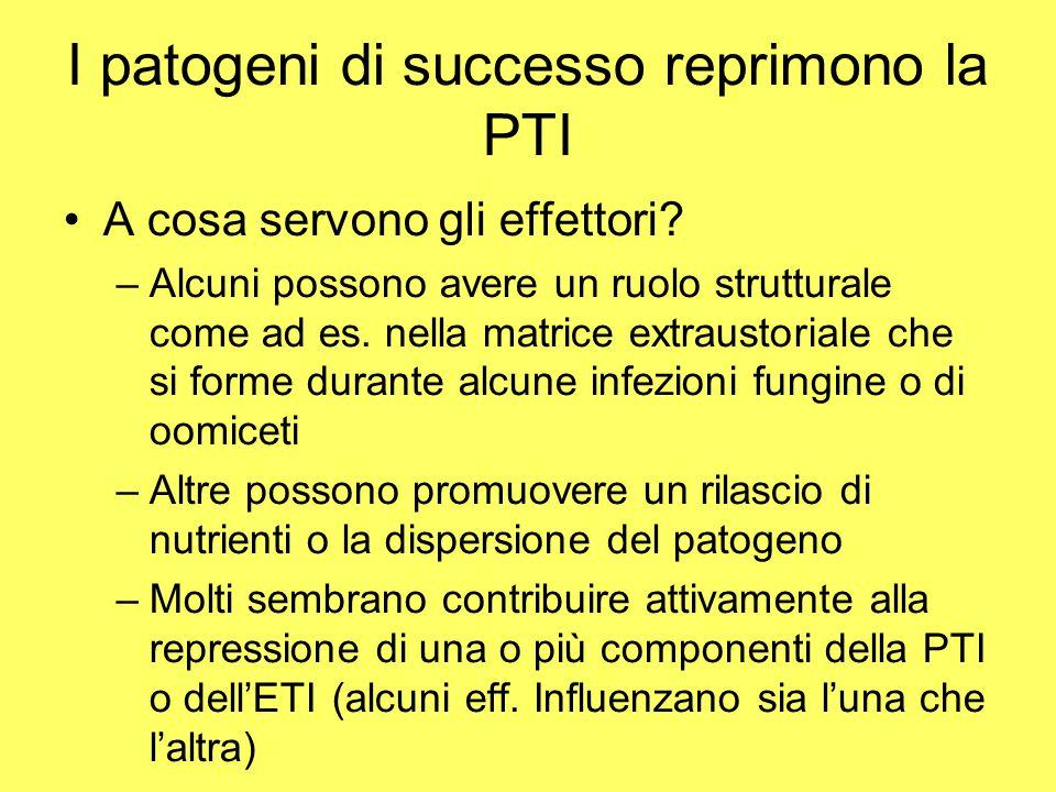 I patogeni di successo reprimono la PTI