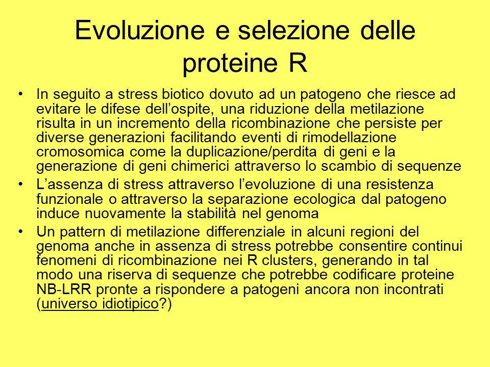 Evoluzione e selezione delle proteine R