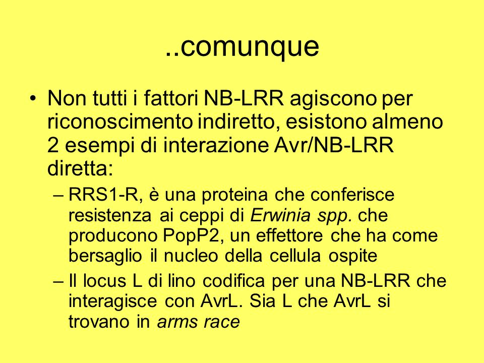 ..comunque Non tutti i fattori NB-LRR agiscono per riconoscimento indiretto, esistono almeno 2 esempi di interazione Avr/NB-LRR diretta: