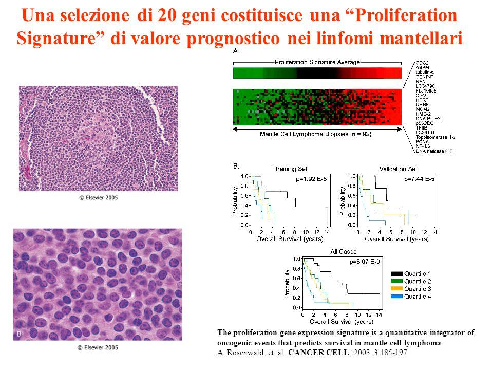 Una selezione di 20 geni costituisce una Proliferation Signature di valore prognostico nei linfomi mantellari