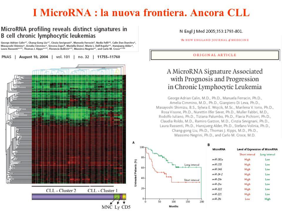 I MicroRNA : la nuova frontiera. Ancora CLL