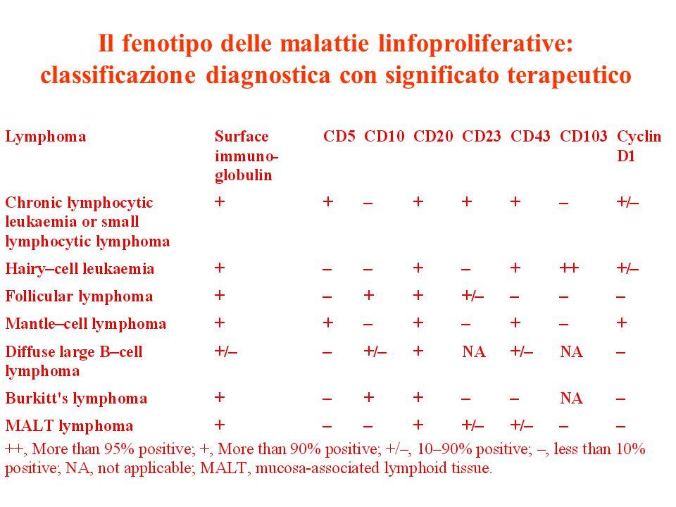 Il fenotipo delle malattie linfoproliferative: classificazione diagnostica con significato terapeutico